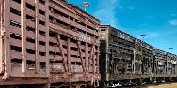 Rail Cars of Olden Days by Wayne Corrigan, f11 Digital, Score: 9
