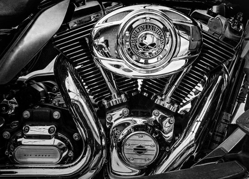 Harley's Muscle by Larry Hartlaub, f11 Digital, Score: 9