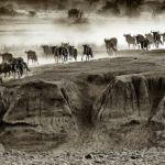 """...and a Cloud of Dust!"" by Butch Mazzuca, f11 Digital, Score: 10"
