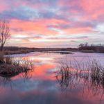 Pastel Pond by Brian Donovan, f16 Digital, Score: 10