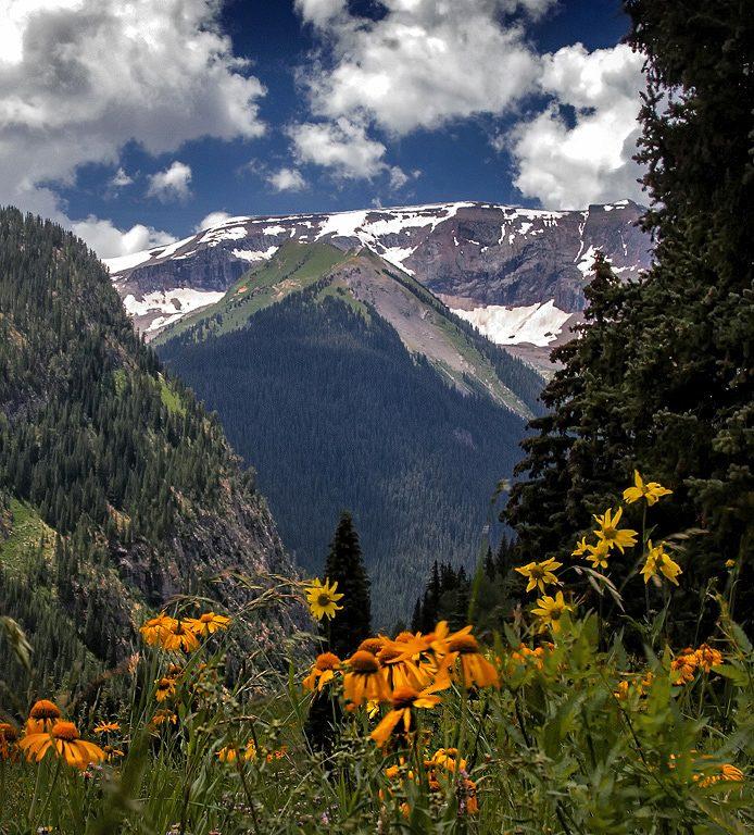 Mountain Magic by Dick York, f16 Digital, Score: 10