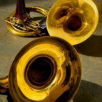Sousaphones by Joe Bonita, F16 Digital, Score-9