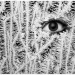Jackie Frost by Joe Bonita, f16 Monochrome, Score: 10