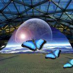 Exodus by Gwen Piña, f16 Digital, Score: 10