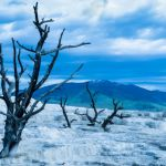 Barren Land by Wayne Corrigan, F8 Digital, Score-9