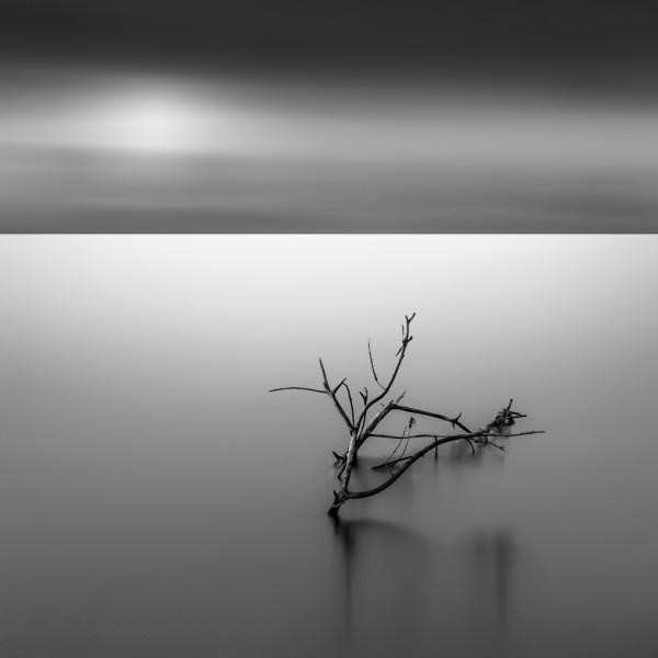 Desolate Desperation by Kevin Holliday, f16 Monochrome, Score: 10