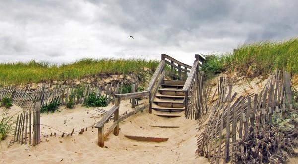 Last Days of Summer by Diane Katzenberger, f11 Digital, Score: 9