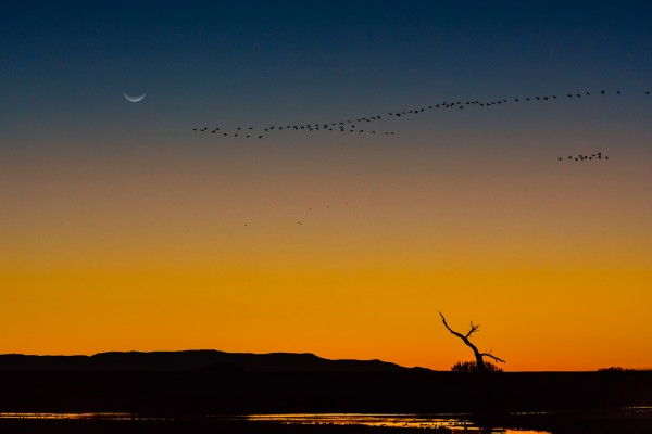 Bosque Sunrise by Leander Urmy, f16 Digital, Score: 10