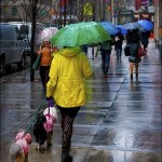 Rainy Day in the City by Peggy Dietz, 3rd f11 Color