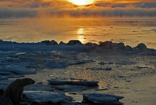 Enjoying the Sunrise by Elmer Paetow, f11 Digital, Score: 9