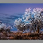 Cold, Cold Morning by Leander Urmy, f16 Digital, Score: 10