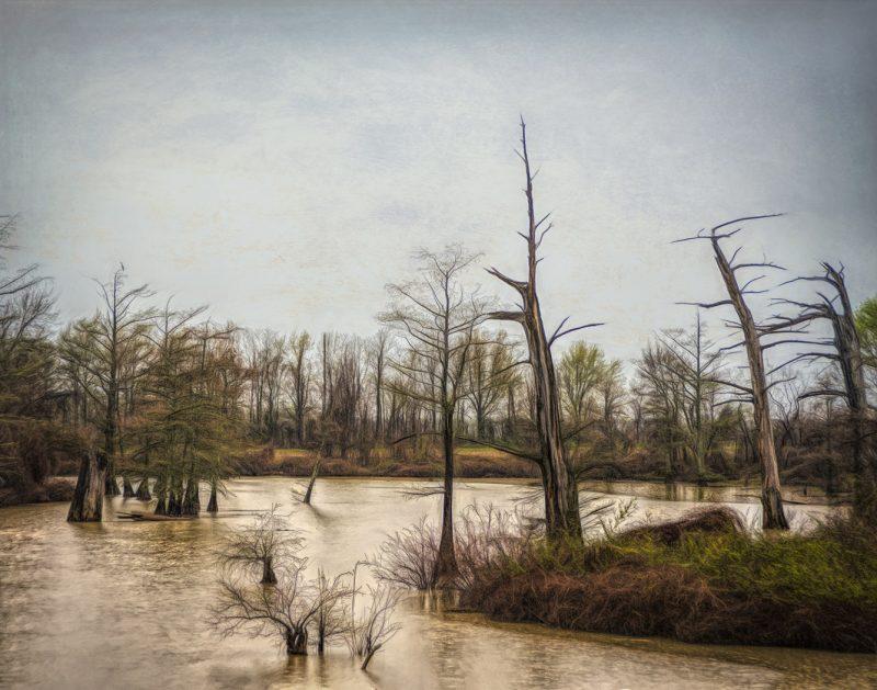 muddy waters by Travis Broxton, f16 Digital, Score: 9