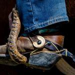 Spur and Stir-up by Leander Urmy, f16 Digital, Score: 9