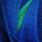 Fisherman's Art by Oz Pfenninger, f16 Digital, Score: 10