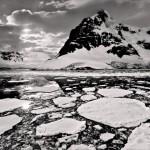 Backlit Antartica by Joe Bonita, 1st f16 Monochrome