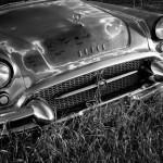 55 Buicks, Parker, Colorado