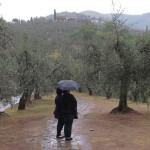 Walking in the Rain by Muffie Swan, 3rd f5.6 Digital