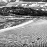 Sandy Tracks by Gary Witt, 1st f8 Monochrome