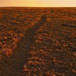 Santa Fe Trail by Mary Paetow, f16 Digital, Score: 10