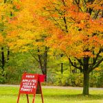 New England in Fall: Yummy! by Rick Matson, f8 Color, Score: 9