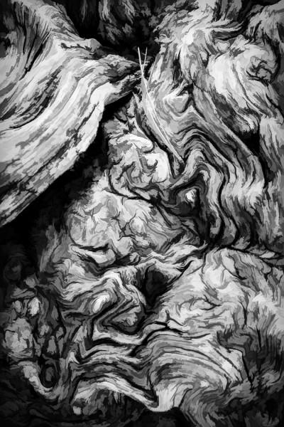 Pine Needles in a Gnarl by Larry Hartlaub, f8 Digital, Score: 10