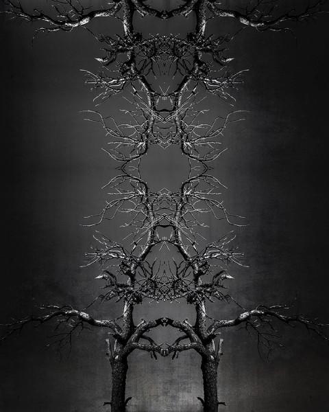 Mirror Mirror by Travis Broxton, f16 Digital, Score: 10
