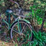 Old Bike by Lucius Ashby, f8 Digital, Score: 9