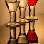 Line 'Em Up Barkeep by Brian Donovan, f11 Digital, Score: 10