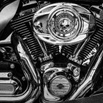 Harley's Muscle by Larry Hartlaub, f11 Digital, Score: 9