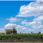 Home on the Range by Gwen Pina, 3rd f5.6 Color