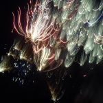 Fourth of July with a Bang by Linda Slavec, 2nd f5.6 Digital