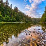 Pebble River by Danny Lam, f16 Color, Score: 10