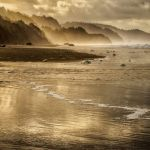 Morning Light by Oz Pfenninger, f16 Digital, Score: 9