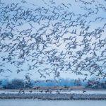 Morning Takeoff by Danny Lam, f16 Digital, Score: 9