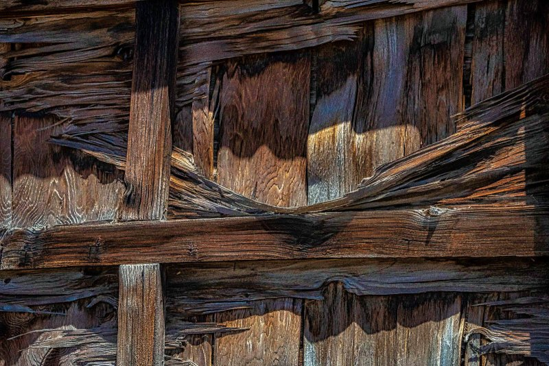 Fence Warp by Victoria Ashby, f11 Color Digital, Score: 9