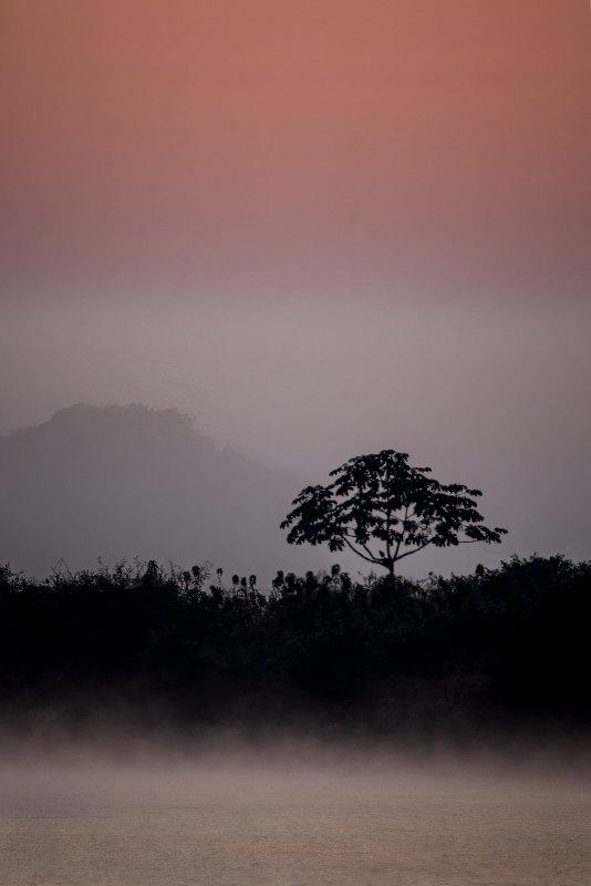 Mystical Morning by Gary Witt, f16 Color Digital, Score: 10