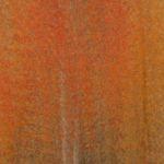 Fiery Aspen by Nancy Myer, f16 Color Digital, Score: 9