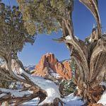 Winter Morning by A.J. Spong, f11 Digital, Score: 10