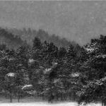 Winter Tapestry by Leander Urmy, f16 Digital, Score: 9