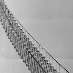 Going Up? by Rand Smith, F11 B&W Digital, Score: 10