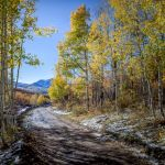 Autumn Near the West Elks by Gary Witt, f16 Color, Score: 10