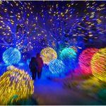 Walking Through Wonderland by Dave Hull, f11 Digital, Score: 10