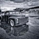 All Wet But Still Beautiful by Dan Greenberg, 1st f16 Monochrome