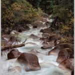 Happiness is a Mountain Stream by Gwen Paton, f11 Color Digital, Score: 9