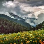 Cloudy Weather by Dick York, f16 Digital, Score: 10