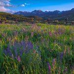 Mountain Meadow Sunset by Ronald Schaller, f11 Digital, Score: 9
