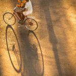 Love is in the air by Jeff Hochwalt, f11 Digital, Score: 10