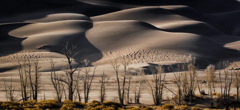 The Dunes by Dick York, f16 Digital, Score: 10