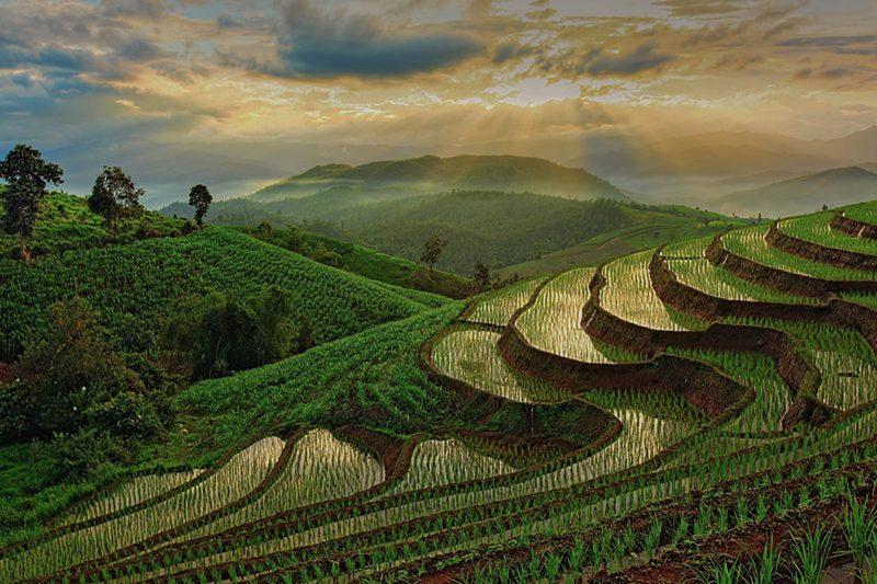 Bountiful View by Gwen Piña, f16 Digital, Score: 10