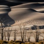 The Dunes by Dick York, f16 Digital, Score: 10